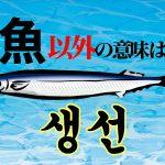 韓国語単語「생선」の「魚」以外の意味は何?韓国の若者はみんな使ってるこの言葉!