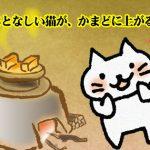 韓国のことわざ「おとなしい猫がかまどに上がる」の意味は?キム・ヒョンジュン主演「イタズラなKiss」のスンジョの台詞にも出てきた表現