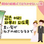 韓国の結婚式では欠かせない言葉「검은 머리 파뿌리 되도록(黒い髪がねぎの根になるまで)」とは?