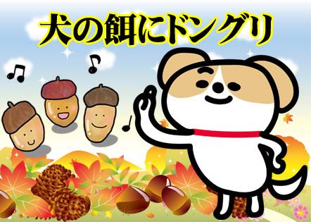 犬の餌にどんぐり 韓国語