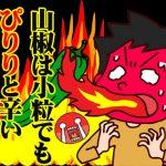 ことわざ「山椒は小粒でもぴりりと辛い」は韓国語では何という?