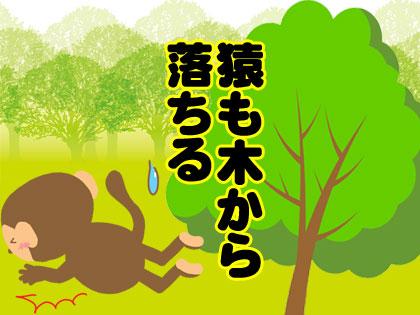 猿も木から落ちる 韓国語