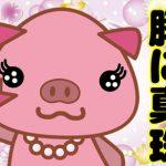 韓国語で「豚に真珠」は何という?