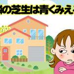 韓国語で「隣の芝生は青くみえる」は何という?