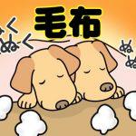 韓国語で「毛布」は何という?寝具に関する韓国語単語を覚えよう!