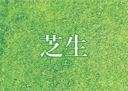 芝生 韓国語